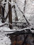 Zimy zatoczka Zdjęcia Stock
