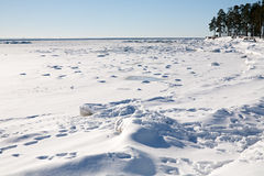 Zimy zatoka Zdjęcia Stock