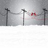 Zimy ziemia Ilustracji
