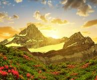 Zinalrothorn nel tramonto - Svizzera Immagine Stock