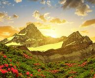 Zinalrothorn in the sunset - Switzerland. Stock Image