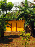 Zinc sheet metal house in jungle  Quinn Hill Big Corn Island Nic. Zinc sheet metal house in jungle   Quinn Hill Big Corn Island Nicaragua Central America Stock Image