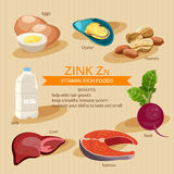 Zinc. Vitamins and minerals foods. Vector flat icons graphic design. Banner header illustration. Royalty Free Stock Images