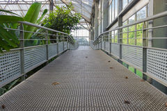 Zinc walkway Stock Images