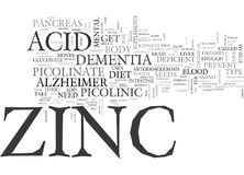 Without Zinc You Are Headed Towards Dementia Or Alzheimer S Word Cloud Royalty Free Stock Images