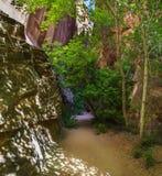 Zingende Canion op Burr Trail Royalty-vrije Stock Fotografie
