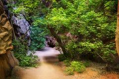 Zingende Canion op Burr Trail Royalty-vrije Stock Afbeeldingen
