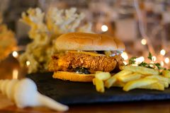 Zinger-Burger mit Pommes-Frites lizenzfreie stockfotografie