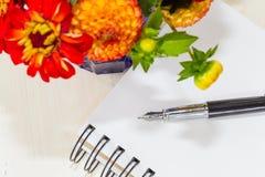Zinnia-Blumenstrauß und Füllfederhalter Stockfoto