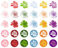 Zinnia colorful vector icon. Zinnia icon (pink red green blue orange violet Royalty Free Stock Photo