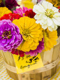Zinnia flower bouquet Royalty Free Stock Images