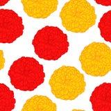 Zinnia seamless pattern Royalty Free Stock Photos