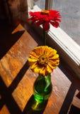 Zinnias in einem Vase Lizenzfreies Stockfoto