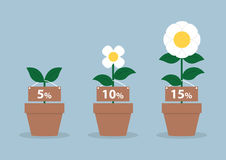 Zinssätze und unterschiedliche Größe von Blumen, Finanzkonzept Stockfoto