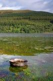 Zinwanne im See stockfoto