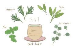 Ziołowa herbacianego set/Gorąca herbata i azjata stylowa filiżanka royalty ilustracja