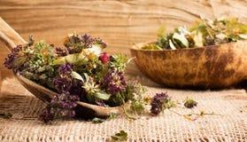 Ziołowa herbata. zdjęcia royalty free