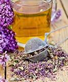 Ziołowa herbata od oregano z durszlakiem w szklanym kubku Fotografia Royalty Free