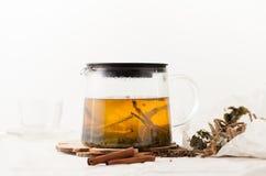 Ziołowa herbata od sosny pączkuje z cynamonu i malinki liśćmi Obrazy Stock