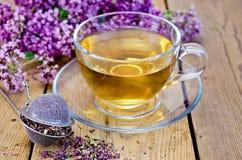 Ziołowa herbata oregano z durszlakiem w szklanej filiżance zdjęcie royalty free