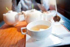 Ziołowa herbata w filiżance Obraz Stock