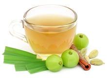 Ziołowa herbata w filiżance z różnymi ziele Obrazy Royalty Free