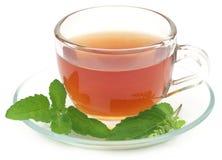 Ziołowa herbata w filiżance z tulsi opuszcza obraz stock
