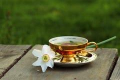 Ziołowa herbata w złotej filiżance, biały daffodil lying on the beach na spodeczku obraz stock