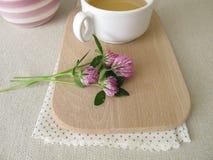 Ziołowa herbata z czerwoną koniczyną Zdjęcia Royalty Free