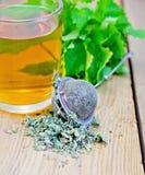Ziołowa herbata z mennicą w durszlaku i kubku Zdjęcia Royalty Free