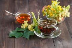 Ziołowa lipowa herbata obrazy royalty free