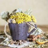 Ziołowa medycyna, homeopatia kolekcja leczniczy ziele dla herbaty i medycyny, Wysuszeni tansy kwiaty i dębów liście w filiżance zdjęcia stock