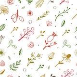 Ziołowego i kwiecistego wektorowego doodle bezszwowy wzór 2 royalty ilustracja