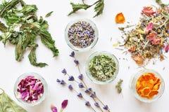 Ziołowej herbaty składniki Obrazy Royalty Free