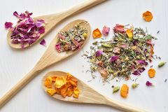 Ziołowej herbaty składniki Zdjęcia Stock
