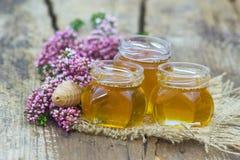 Ziołowy miód z wrzosów kwiatami obraz royalty free