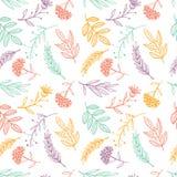 Ziołowy nakreślenie, detox Bezszwowy deseniowy kolorowy projekt ilustracja wektor