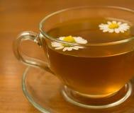 ziołowa rumianek herbata Zdjęcia Royalty Free
