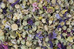 Ziołowa zimy herbata obraz stock
