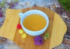 ziołowej herbaty macierzanka Fotografia Royalty Free
