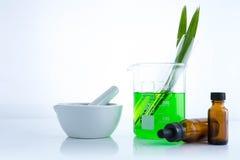 ziołowej medycyny organicznie i naukowy naturalny glassware Obraz Royalty Free