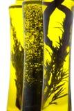 ziołowy olej Fotografia Stock