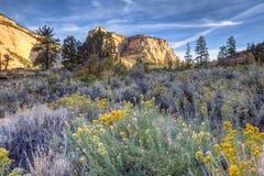 Zion国家公园 免版税图库摄影