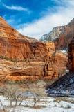 Zion το χειμώνα στοκ εικόνες