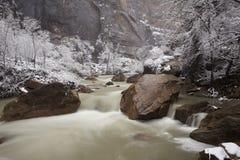 zion зимы взгляда реки rapids каньона Стоковое Изображение