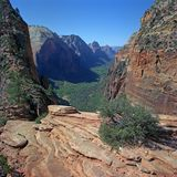zion каньона Стоковая Фотография