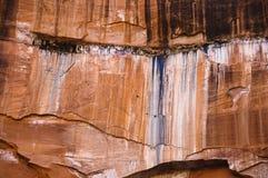 zion красного цвета скал Стоковая Фотография