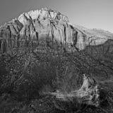 zion национального парка Стоковое Изображение RF