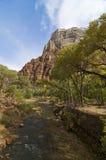 zion реки стоковая фотография rf