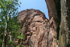 zion Юты национального парка Стоковая Фотография RF
